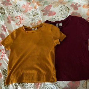Two H&M crop tops.